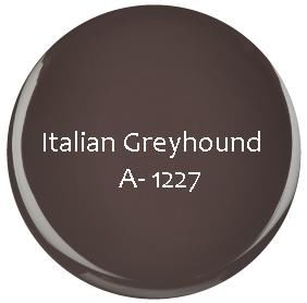 GEL COULEUR SEMI PERMANENT Italian Greyhound 3.6g